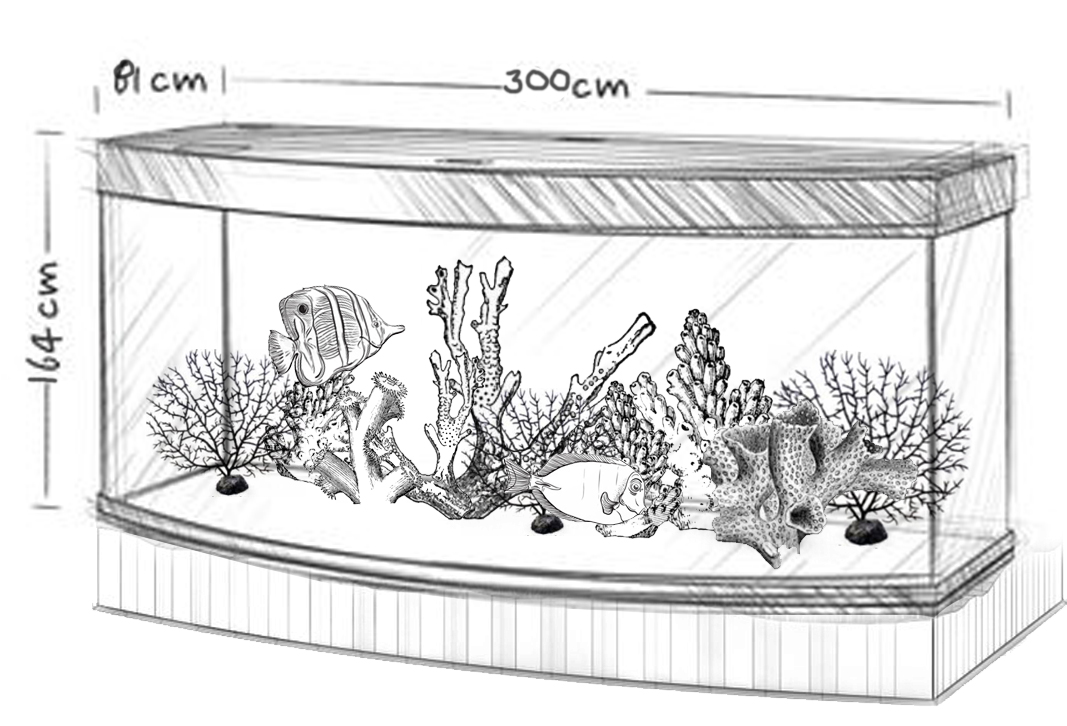 An Aquarium Is Like A Living, Moving Work Of Art. At Least Thatu0027s How  Infinity Aquarium Design Of Los Angeles Approaches Every Installation.